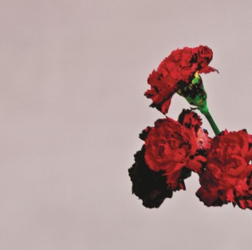 image from johnlegend.com